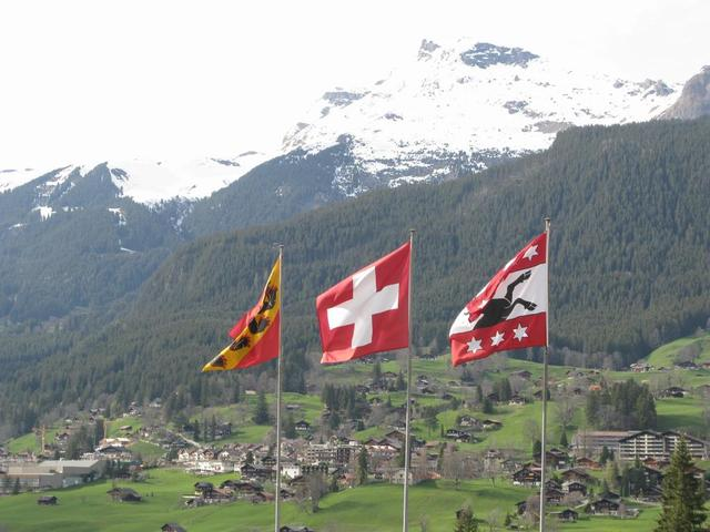 Grindelwald - Flags